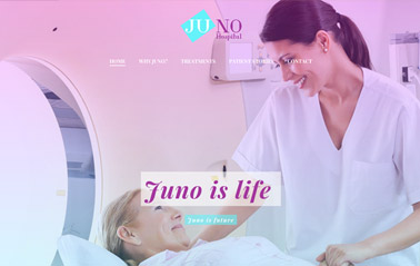 business-website-templates-business-wordpress-theme-juno