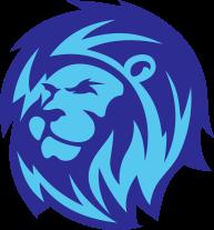 custom-box-lion